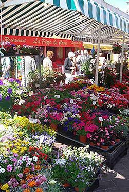 Voyage de noces Sud de la France marché aux fleurs