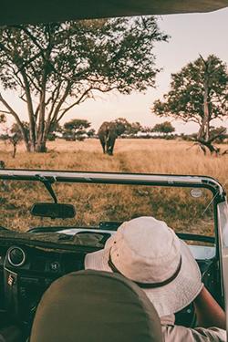Voyage de noces Safari au Kenya