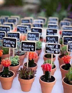 Mini cactus pour invités de mariage